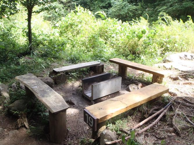 足柄森林公園丸太の森