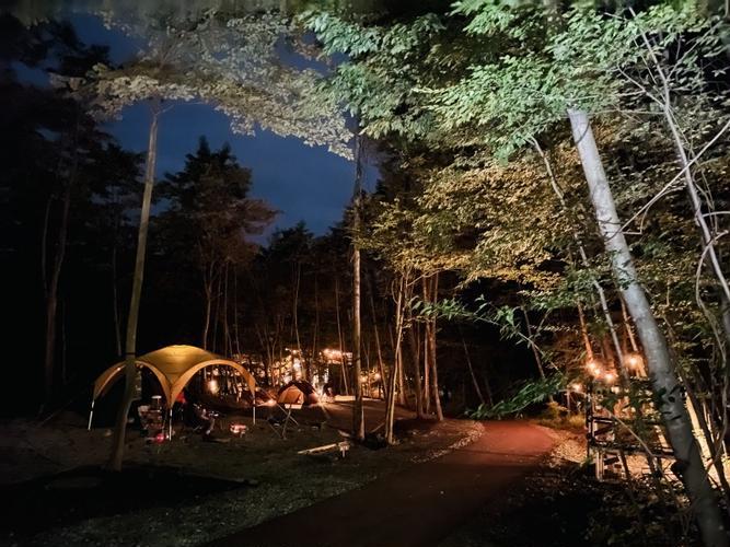テントサイト夜