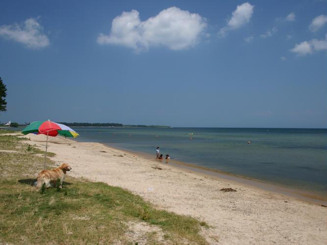 白鬚浜水泳キャンプ場