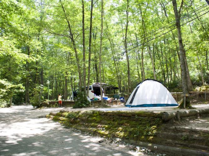 健康村キャンプ場