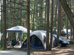 大自然に抱かれたキャンプ場 ウッドペッカー