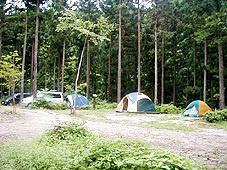 ウッディサイト・正丸キャンプ場