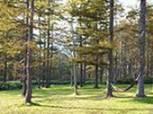 戸隠イースタンキャンプ場