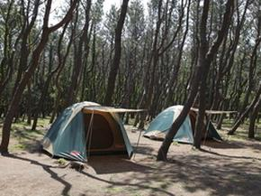 茅ヶ崎市柳島キャンプ場